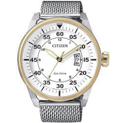 Buy Citizen Men's Watch Aviator Eco-Drive AW1364-54A