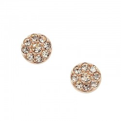 Buy Fossil Women's Earrings Vintage Glitz JF00830791