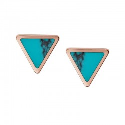 Buy Fossil Women's Earrings Fashion JF02638791