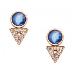 Buy Fossil Women's Earrings Classics JF03009791