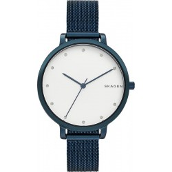 Skagen Women's Watch Hagen SKW2579